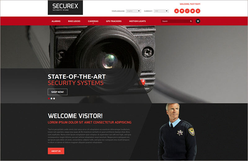 Security Products Store Theme