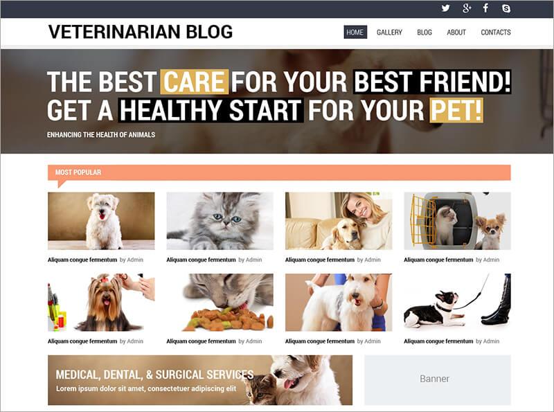 Veterinarian Blog Template