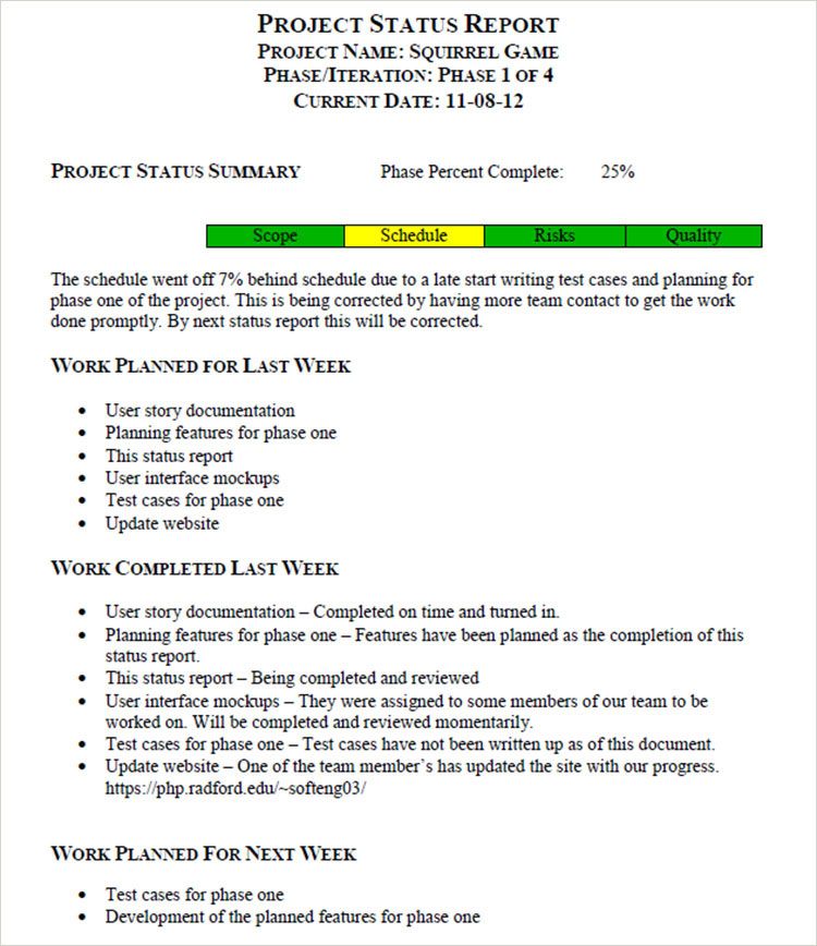 Weekly Project Status Report Template Sample
