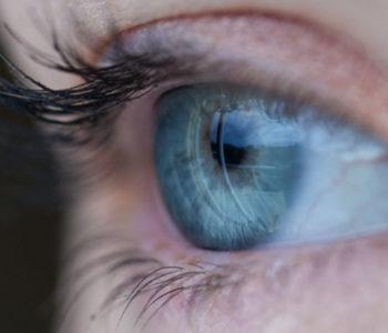 Retina Ready Joomla Templates