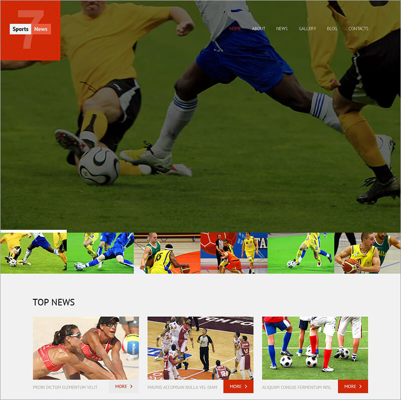 Sports News Responsive WordPress Theme