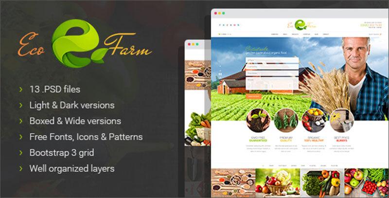 New Organic Food & Eco Farm PSD Template