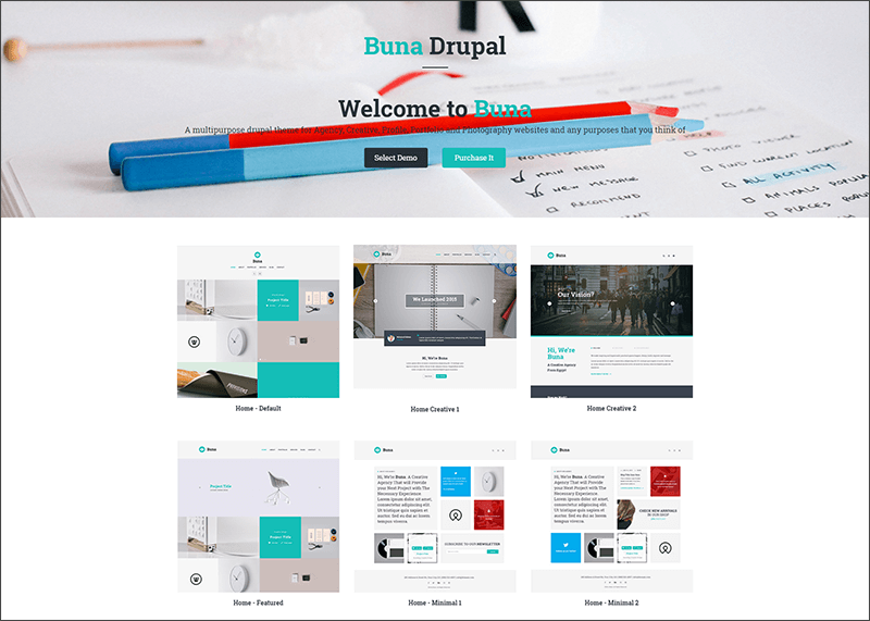 New Portfolio and Agency Drupal Theme