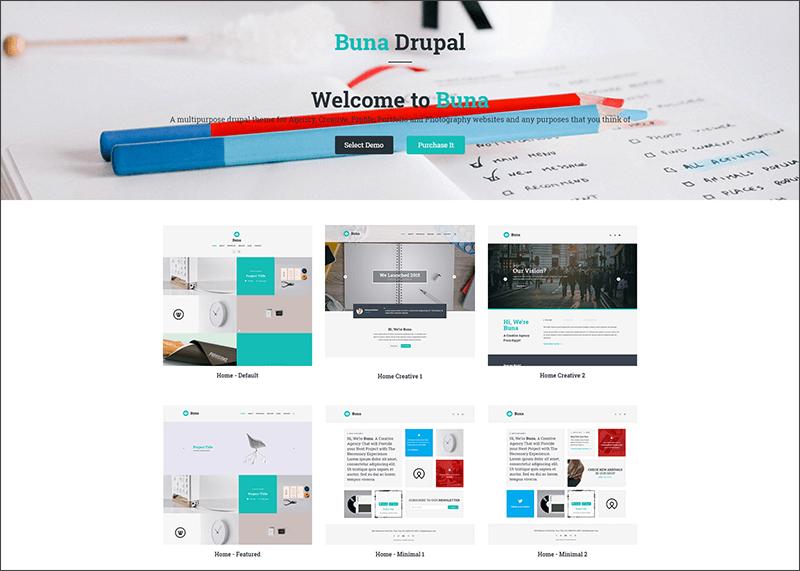 New Portfolio and Agency Drupal Theme