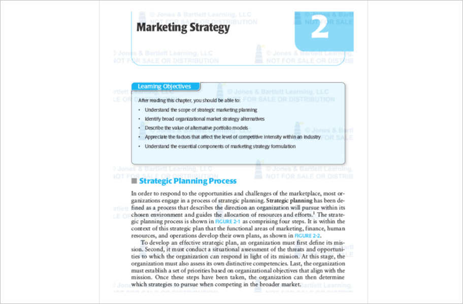 Marketing Strategy Planning Template  Pdf  Word Documents