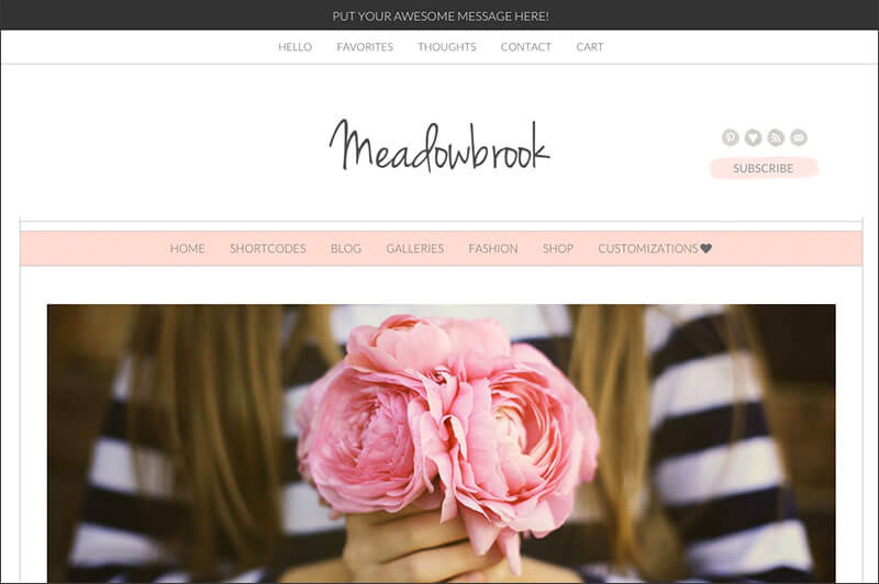 Modern Content included WordPress Theme