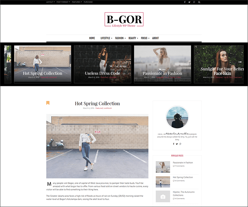New Lifestyle WordPress Theme