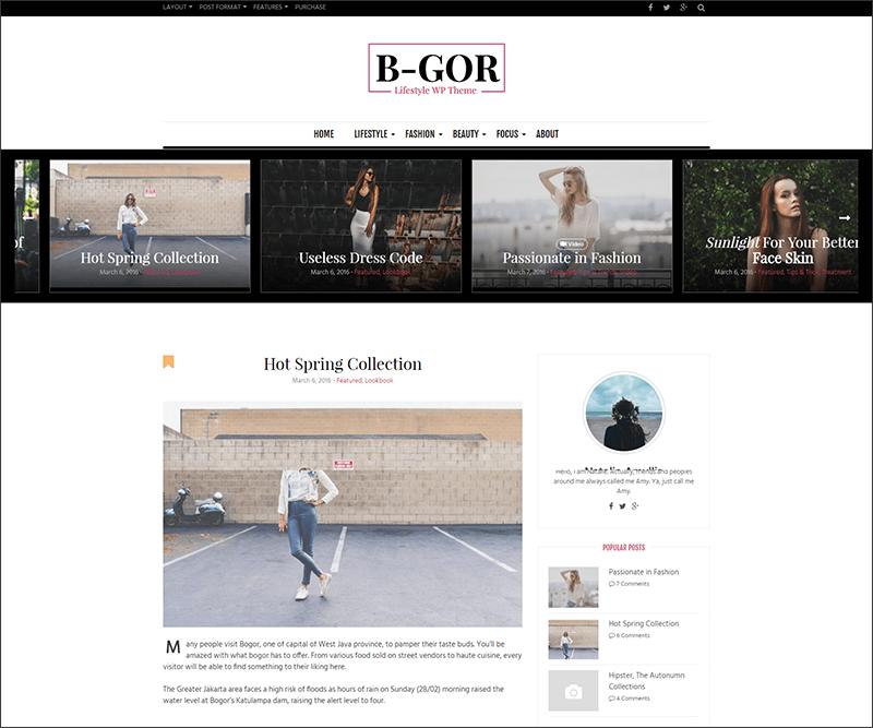 New Lifestyle WordPress Theme