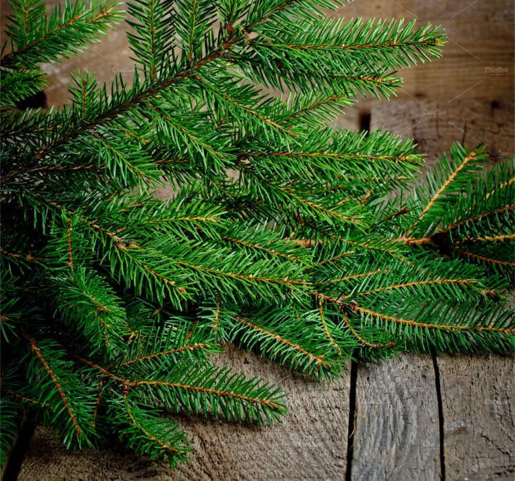 Vector Christmas Decoration Templates