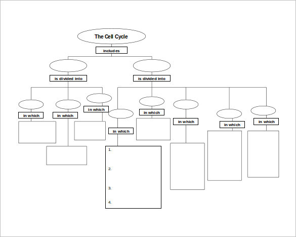 concept map template plainresume co