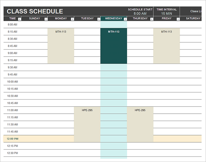 Daily Work Schedule Template Free Download