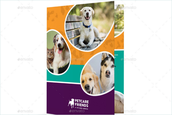 Doggy Day Care Brochure Design
