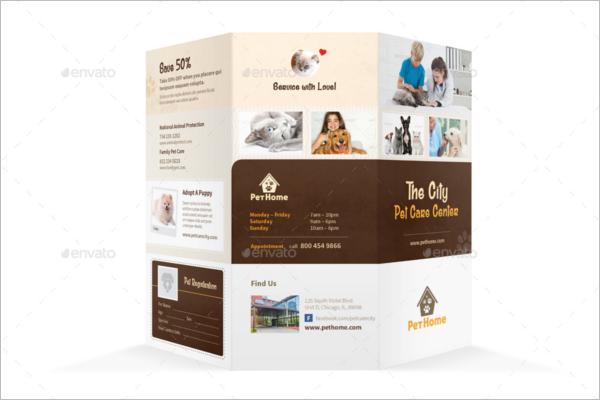 Pet Care Brochure Template