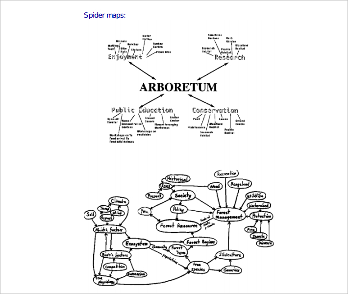 Printable Spider Concept Map
