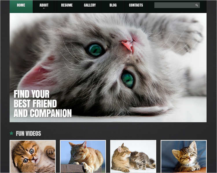 animal-adoption-joomla-template
