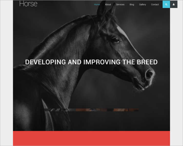 animal-business-joomla-template