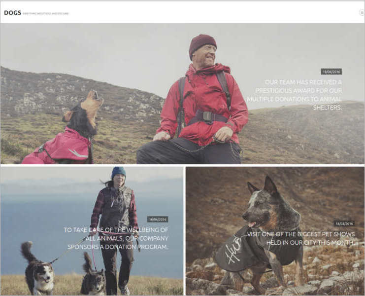 animal-joomla-sitting-template