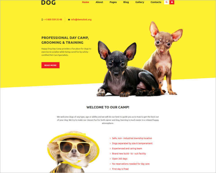 dog-store-joomla-template