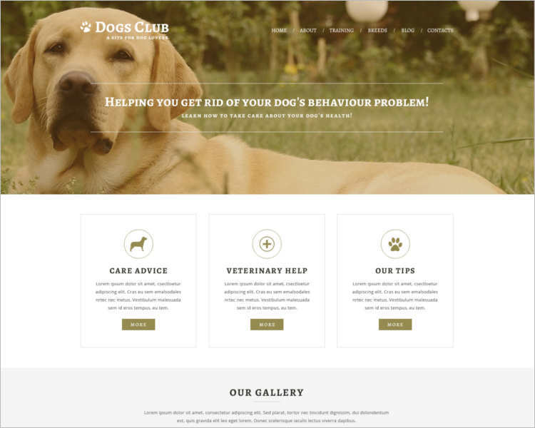 extension-pet-joomla-template