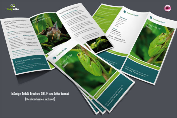 flexible-trifold-zoo-brochure