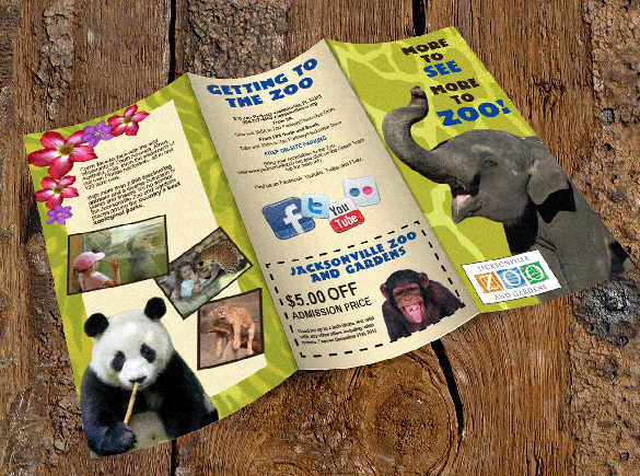 jacksonville-zoo-brochure-template