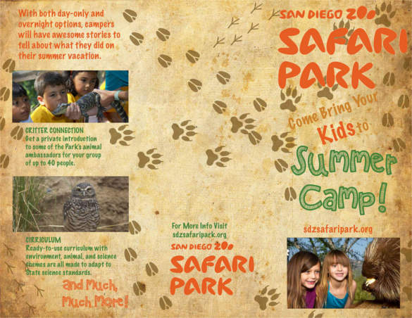 san-diego-zoo-brochure-template