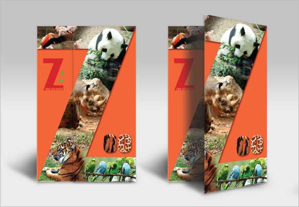 zoo-brochure-temoplate