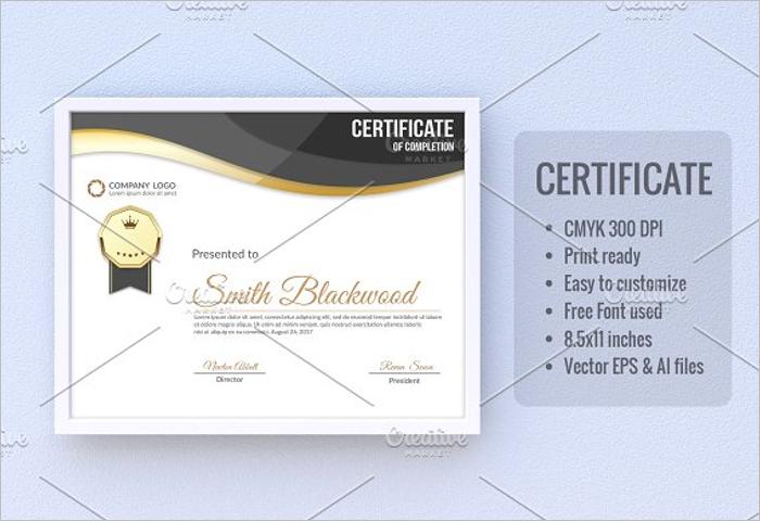 Basic Stock Certificate Format