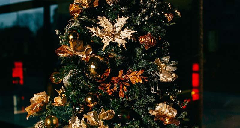 Christmas Tree Mockups