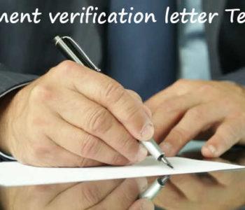Employment Verification Letter