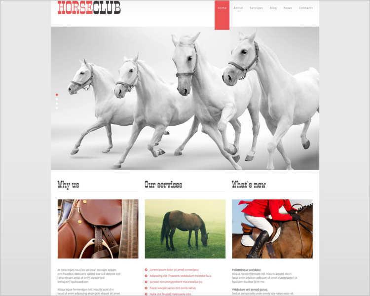 horse-club-wordpress-php-theme-templates
