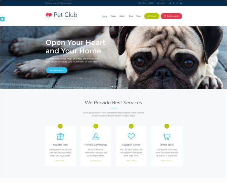 pet-animals-club-theme-template