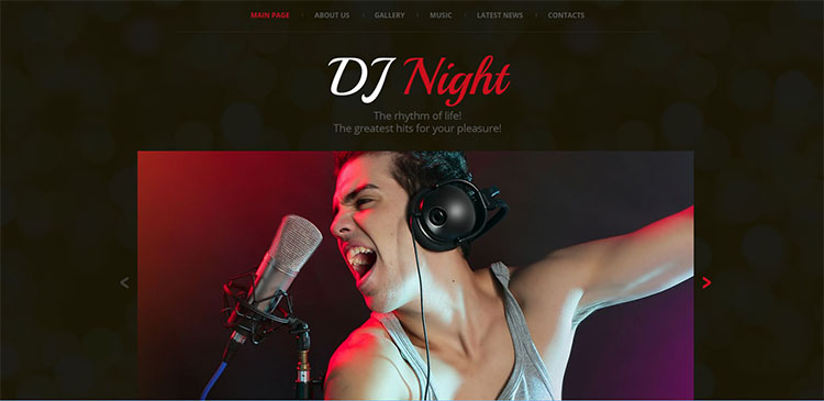 dj-night-party-website-theme-templates