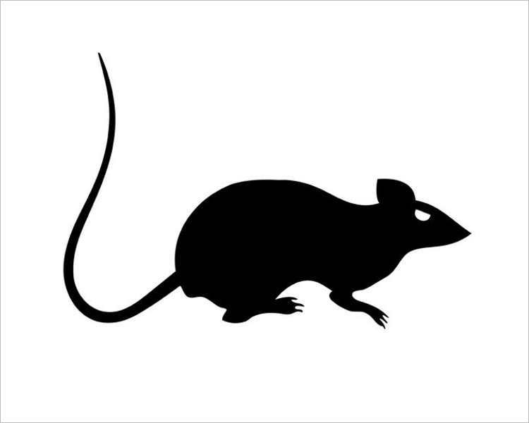 free-halloween-rat-printable-templates