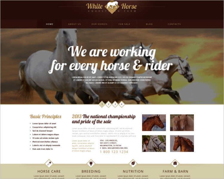 gorgeous-horses-wordpress-theme-templates