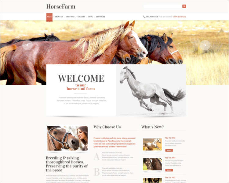 horse-farm-worspress-theme-templates