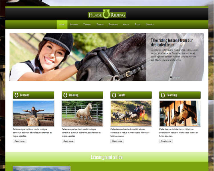 horse-traning-wordpress-theme-templates