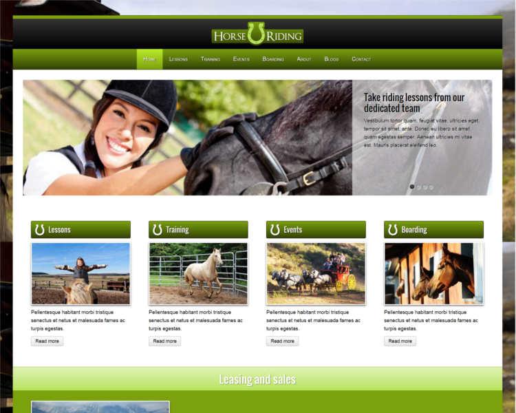 horse-traning-wordpress-theme-templates