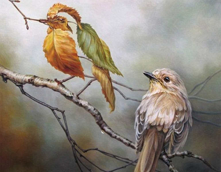 optimal-birds-illusion-painting