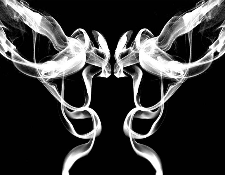 pair-birds-smoke-art6b-photography