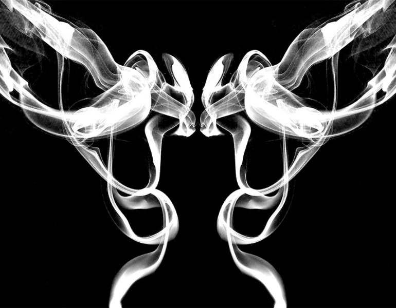 pair-birds-smoke-art6b-photography