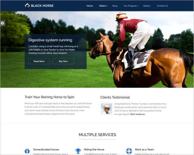 premium-horse-wordpress-theme-templates