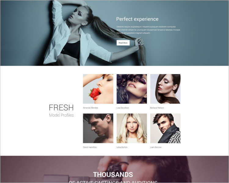 premium-model-agency-website-templates