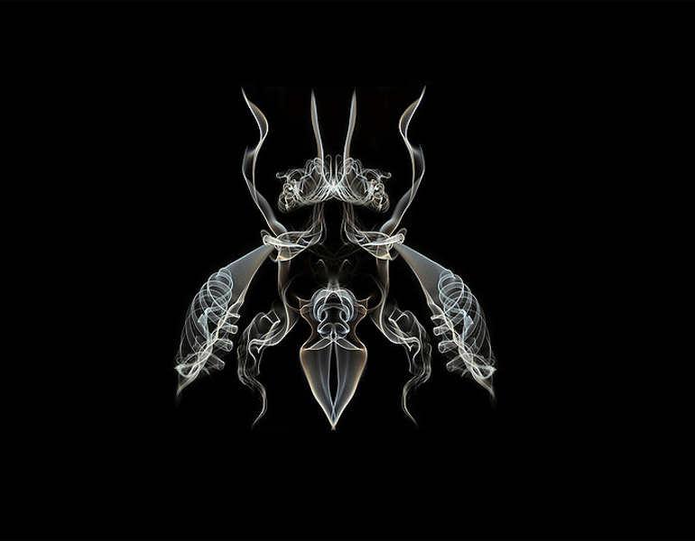 premium-smoke-fly-art-photography