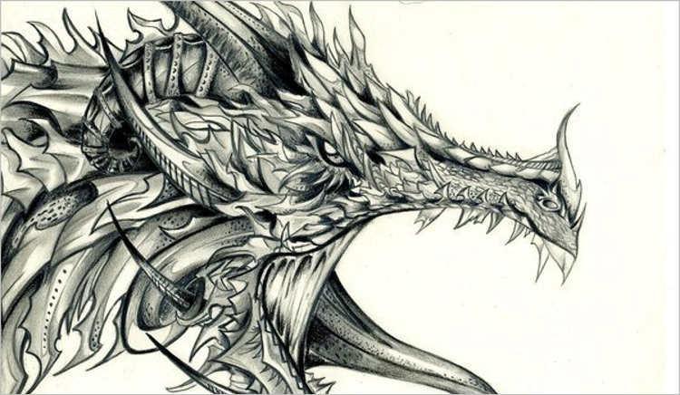 Best dragon Drawing Design