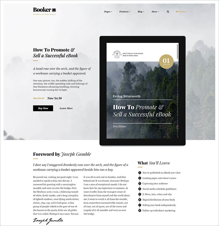 Book Store Selling WordPress Theme