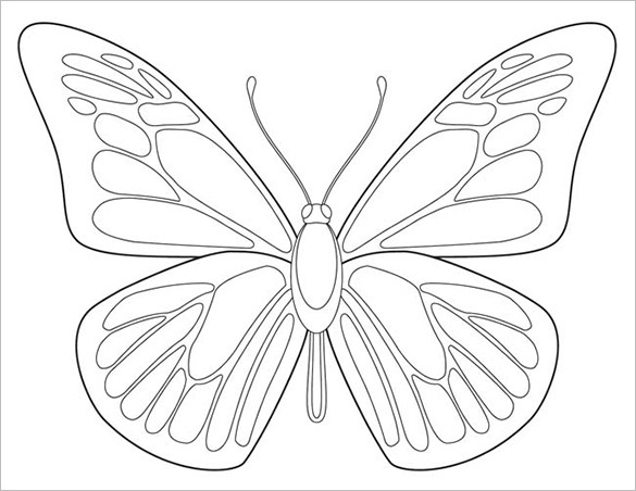 Butterfly Body Outline Templates