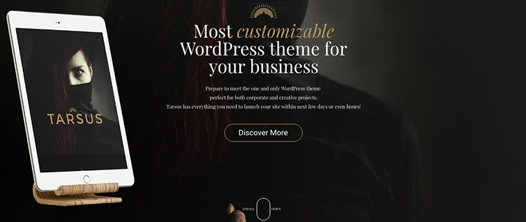 Creative WordPress Theme Templates