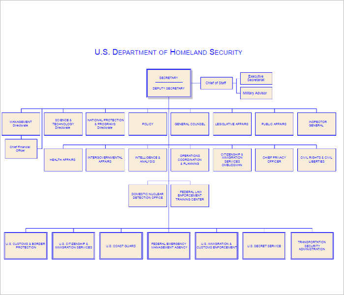 dhs-organizational-chart-templates