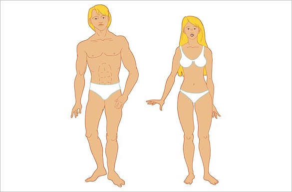 Download Body Outline Templates